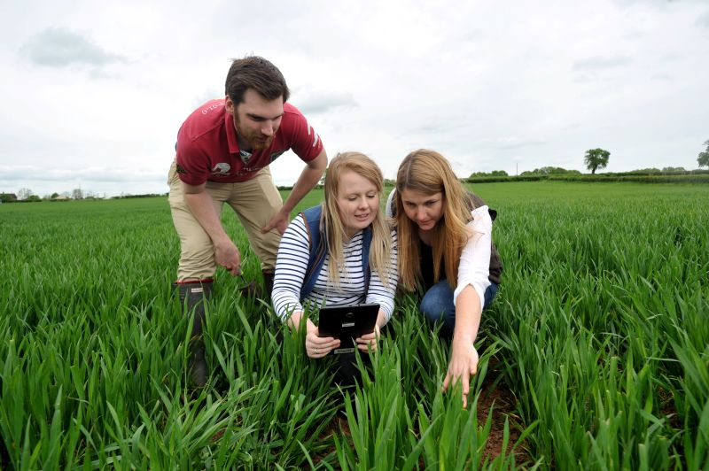 The award is a work experience bursary available to support students who wish to study or work abroad within the agricultural sector