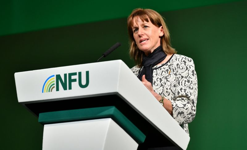 NFU president Minette Batters has called on the UK to better manage its water following severe floods