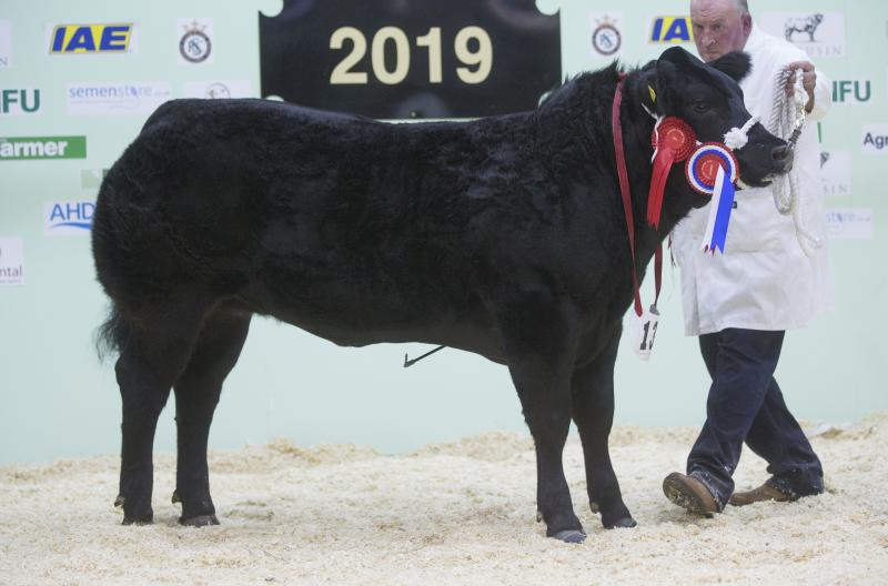 The Somerton-based farmer claimed the fair's coveted supreme champion title