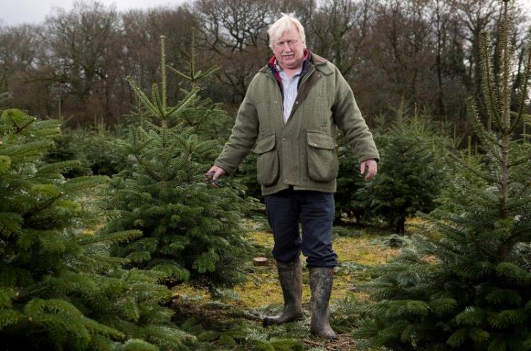 Livestock farmer and Christmas tree grower David Phillips now aims to plant some Noble Fir specifically for foliage