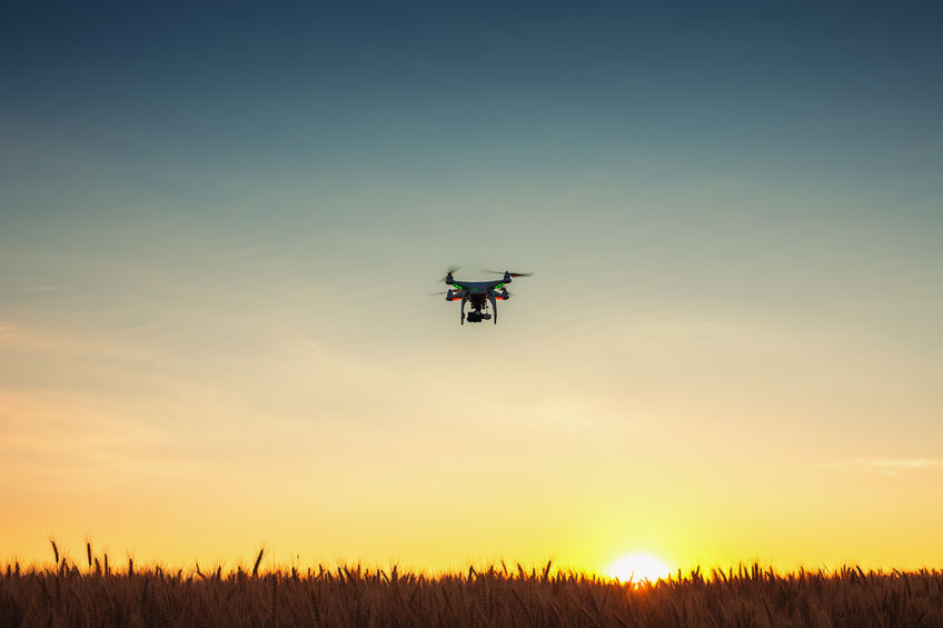 Improper use of drones can cause sheep to panic