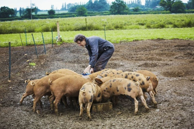 Farmers are the most trusted part of the UK food chain says new consumer research