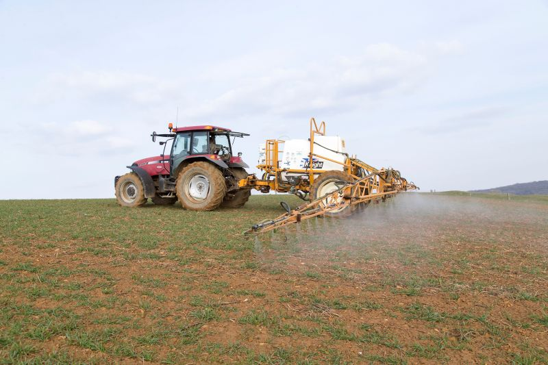 To give the crop the best chance to grow away and out-compete grassweeds, herbicide applications should be made as soon as possible