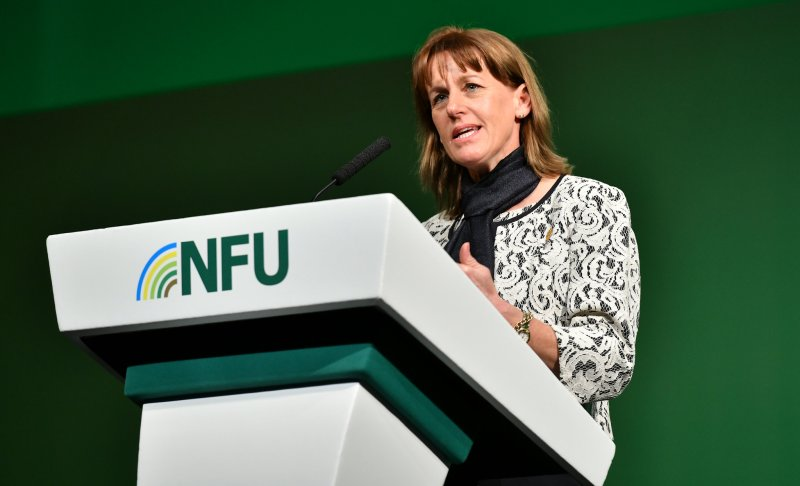 NFU President Minette Batters said food and farming is at the core of the UK's economy and any immigration policy must deliver for its needs