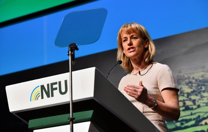 NFU President Minette Batters called for the prime minister and other government ministers needed to stand up for British values in trade talks