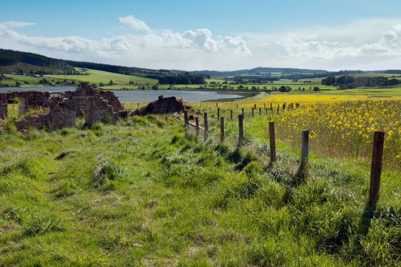 There has been a rise in the number of international buyers looking to buy Scottish land for its natural capital potential