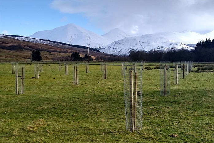 It is hoped the project will encourage farmers and landowners to consider tree proposals on their land