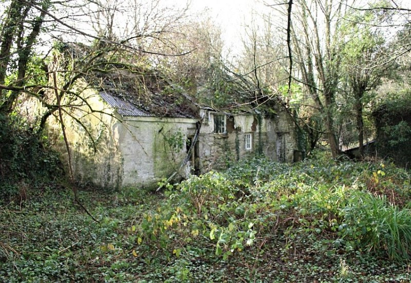 The derelict farm last operated decades ago (Photo: Stags)