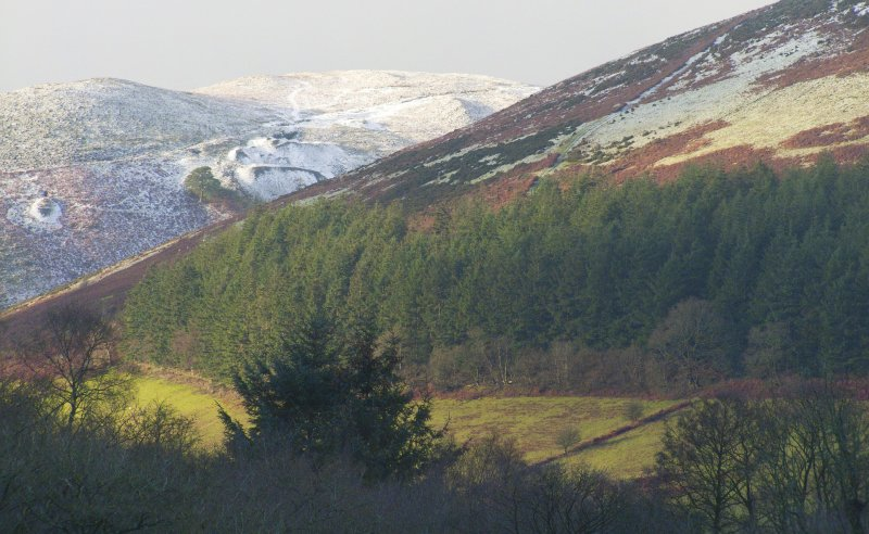 The Welsh government said it wants to work with farmers and land managers to 'translate ambitions into immediate action'