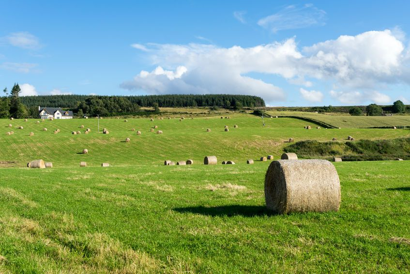 The resilience fund provides grants for a variety of different projects which aim to help farmers understand the changes ahead