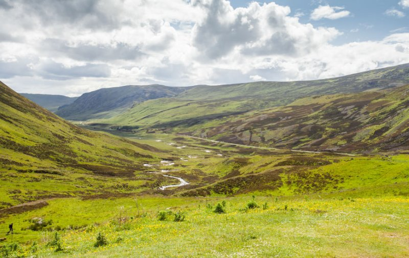 Muirburn is the traditional way to manage moorland and has been practised for centuries in Scotland