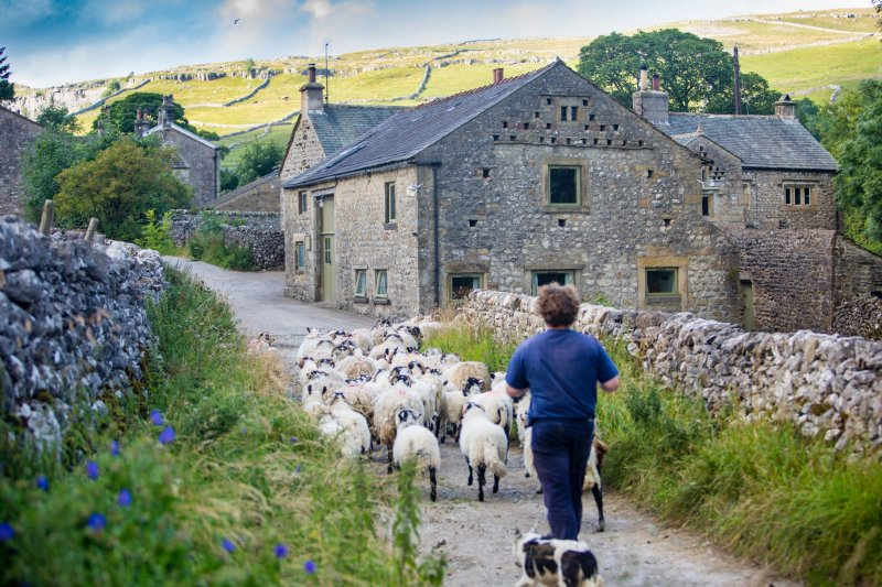 A local and sustainable food supply chain in the UK has 'never been more crucial', farmers have said in a new report