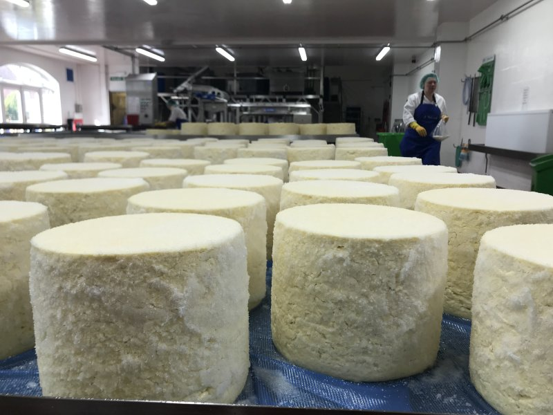 Cheese producers have been forced to pour thousands of litres of milk and give away cheese for free after losing custom due to Covid-19