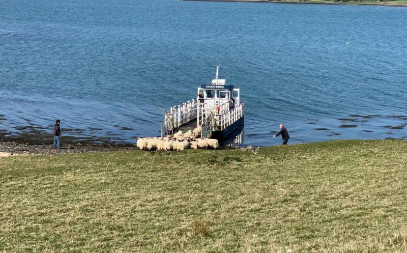 The vessel has allowed for the continued farming of the islands of the Lough in Northern Ireland (Photo: National Trust)