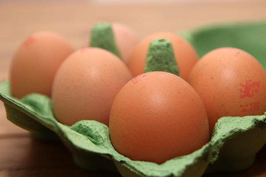 The British Egg Industry Council said it would be a 'moral outrage' to allow in imports produced to lower standards