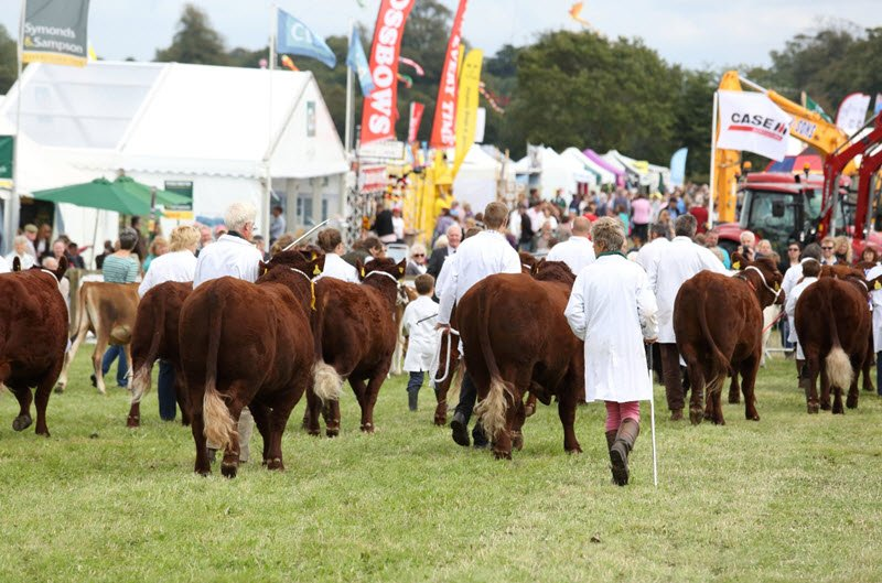 The Dorset County Show, a well-established annual fixture in the county calendar, has been cancelled