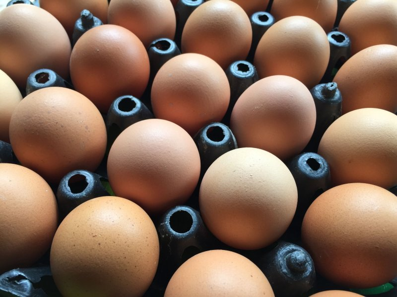 The average farm gate price for a dozen free range eggs was 86.5p in the period from January to March this year compared with 79.2p in the first three months of 2019