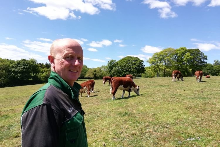 One farmer whose calving interval is lower than the average is David Burnhill, who's the head stockman at the Hean Castle Estate in Pembrokeshire