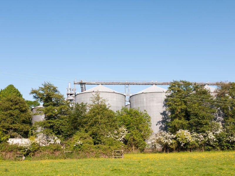 Thieves stole 24 tonnes of feed from a silo, worth around £4,400 (Stock photo)