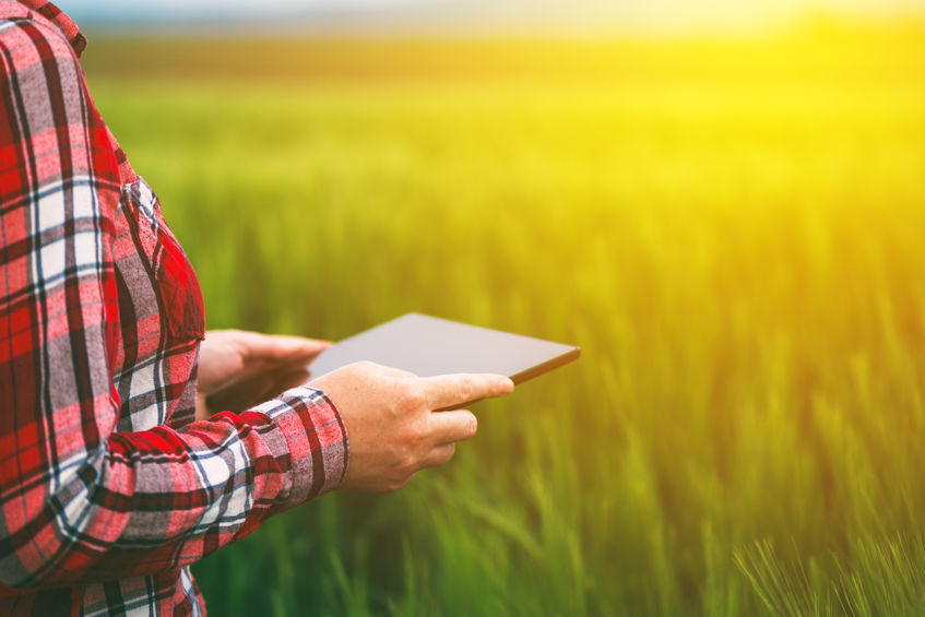 Virtual farm tours included insights into crop uses, cows' diet, soil health, and the benefits of hedgerows