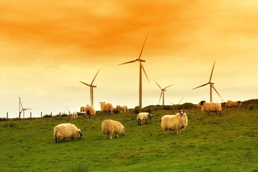 The farming industry is aiming to reach net zero greenhouse gas emissions across England and Wales by 2040