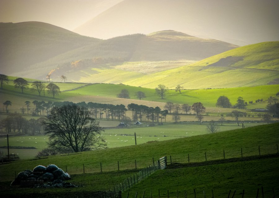 A new report on Wales' Rural Development Programme (RDP) has highlighted long-standing concerns raised by farming groups