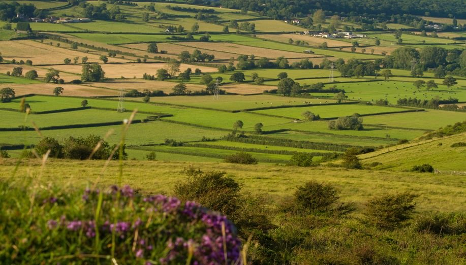 The Countryside Code applies to all parts of the countryside in England and Wales and aims to help everyone respect rural areas