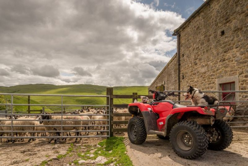 Farmers have been told to increase security on the farm following the theft