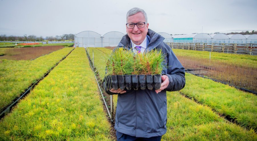Scottish government's rural secretary Fergus Ewing at Alba Trees, one of the UK's largest tree nurseries based in East Lothian