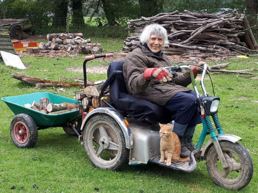 Marion Pont, 87, still works on her sheep farm thanks to her off-road mobility scooters