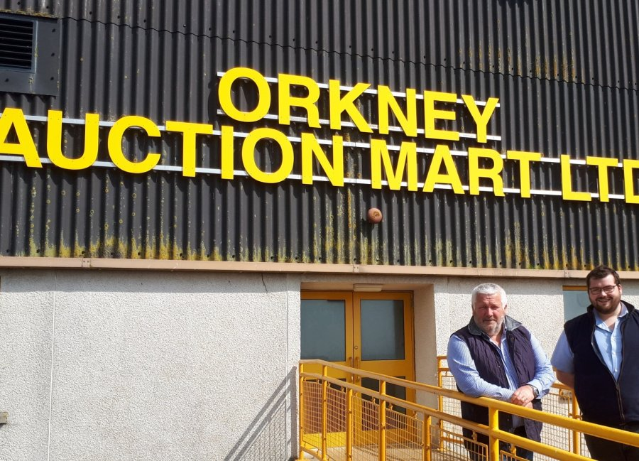 Jim Linklater and Graham Low, both auctioneers at Orkney Mart, say keeping the connection has been key to continued cattle trade on Orkney