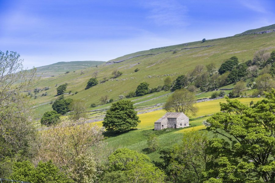 Over 60 farmers and landowners have already committed to carrying out work to boost the environment (Photo: Yorkshire Dales National Park Authority)