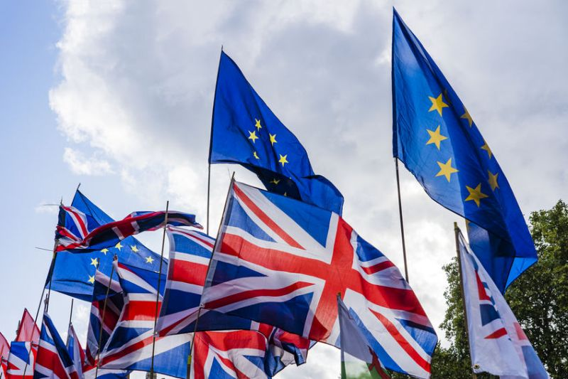 The veterinary sector has highlighted concerns as negotiations on future EU and UK relations started today