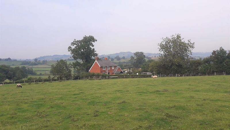 The 60-acre farm is available to let until March 2029 (Photo: Powys County Council)