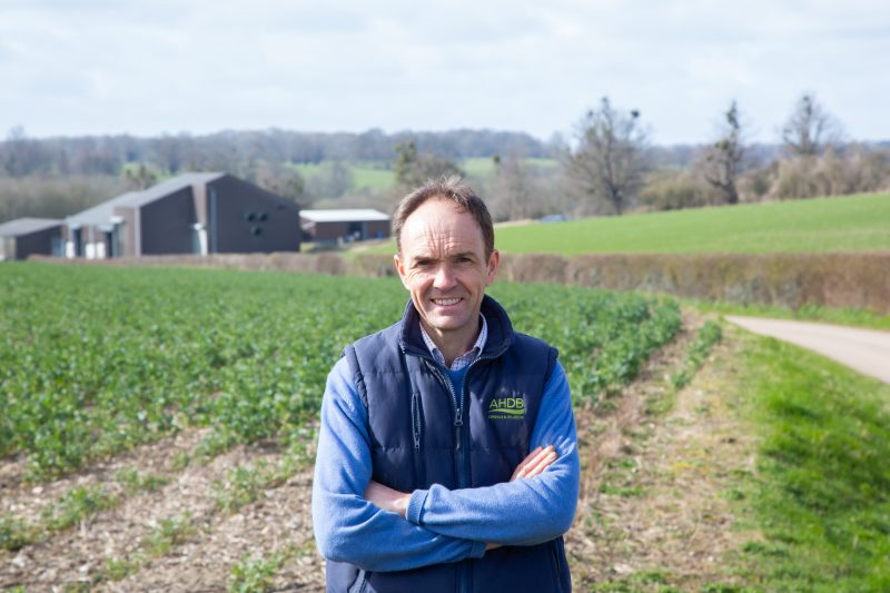 Boosting crop and soil health is helping reduce fungicide inputs for Wiltshire farmer Rob Waterston
