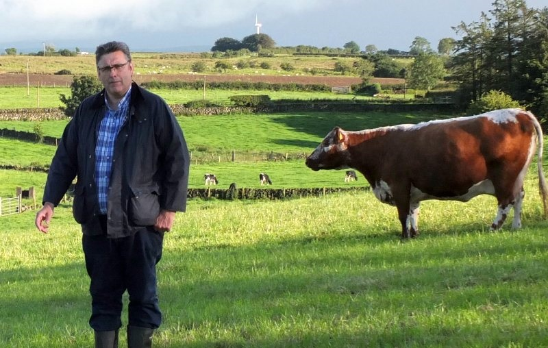 Chairman of the Irish Moiled Cattle Society Brian O'Kane says the auction will have some of the best Irish Moiled cattle in the world