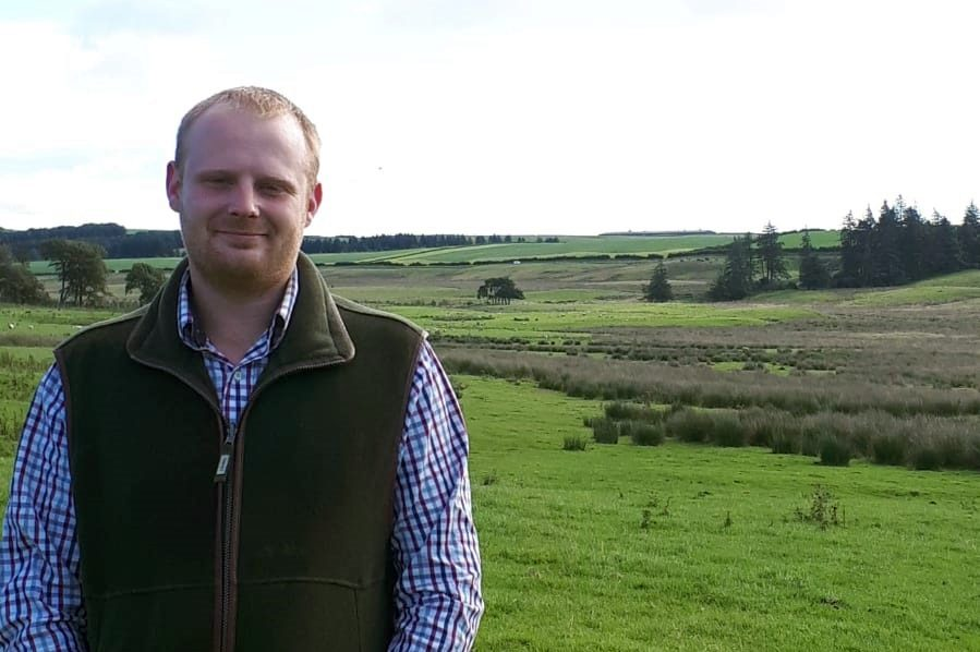 Robbie Pittendrigh says that the dual-purpose breed has allowed his enterprise to expand and diversify