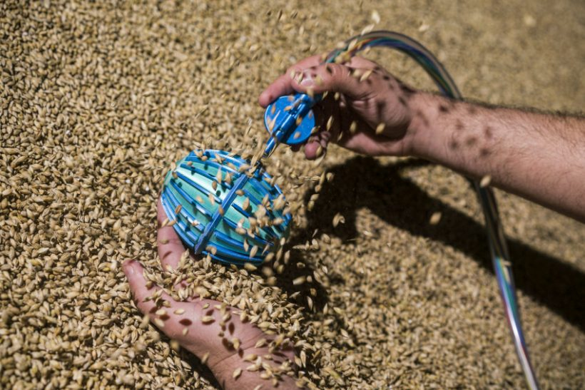 The patented technology behind the Crover robot allows it to fluently 'swim' through bulk solids, like cereals and grains