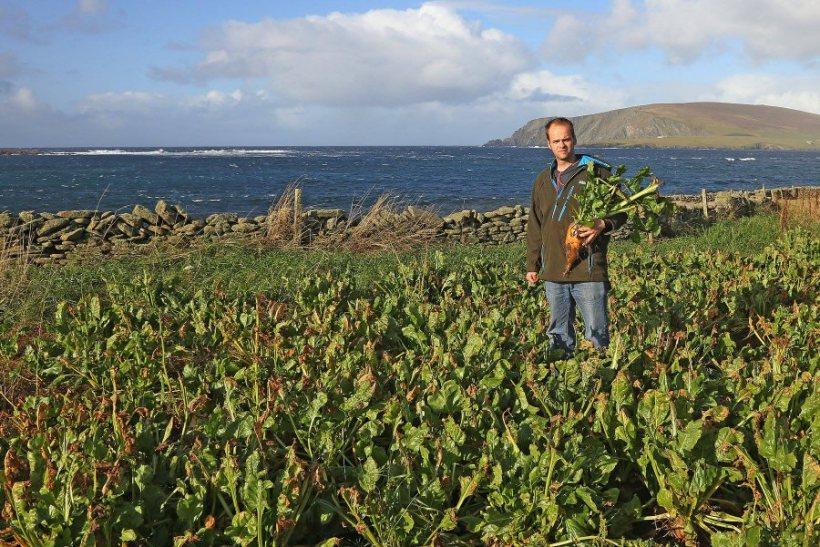 Shetland farmer Jamie Leslie has maximised livestock performance and improved profit by focusing on four key objectives