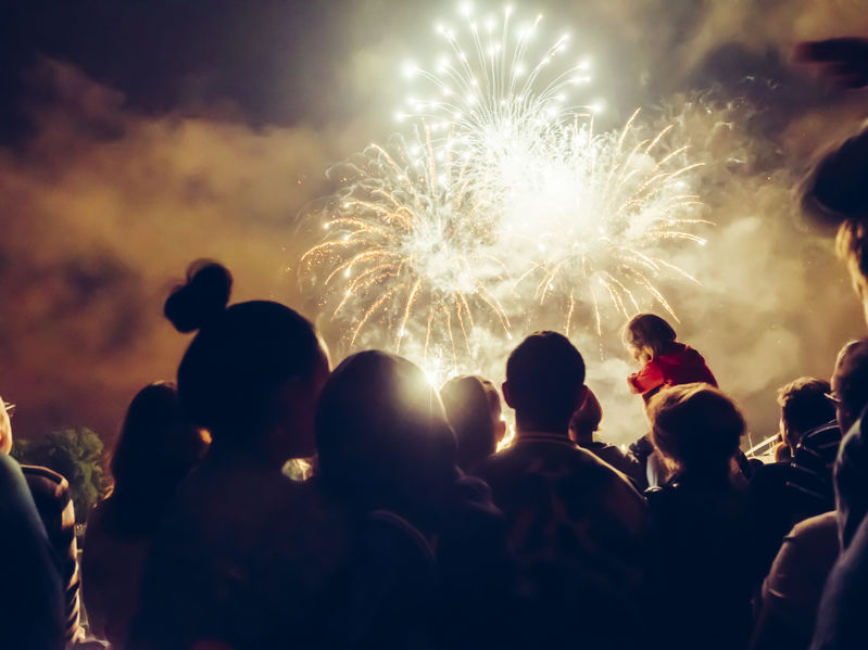 The Covid-19 pandemic may bring with it more unregulated backyard firework displays, the British Veterinary Association warns