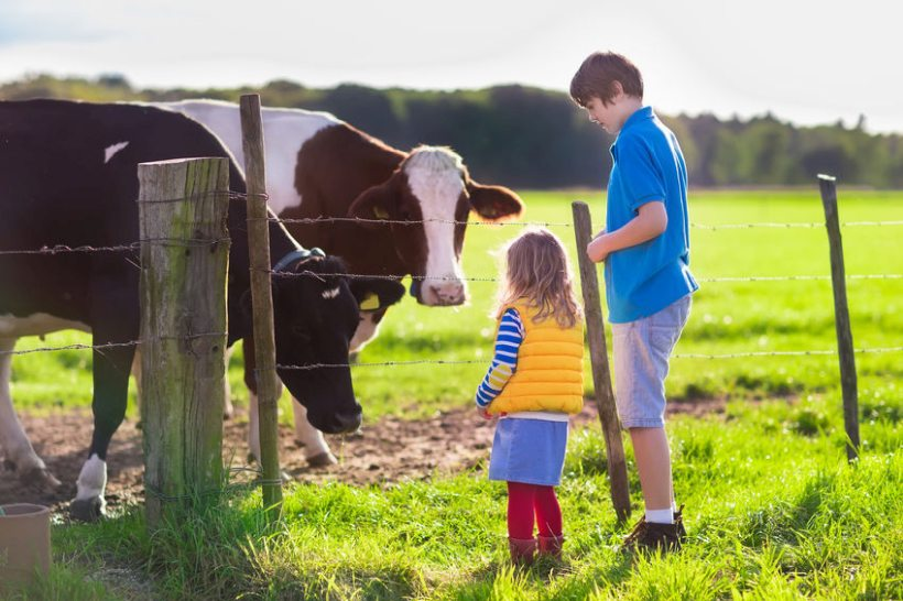 A new survey has found children are disconnected to farming and where their food comes from