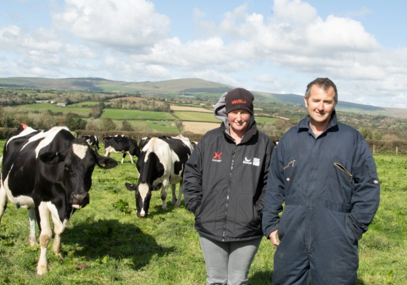Carbon emissions are offset through a combination of measures on the Pembrokeshire farm