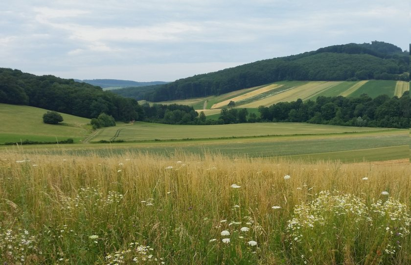 The EU project aims to better understand the ecological impacts of sustainable agriculture
