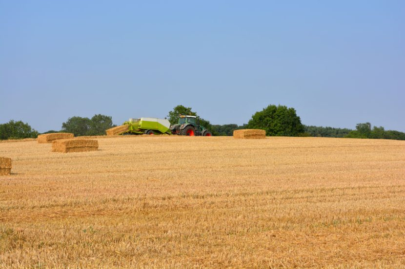 The on-farm assessments will be carried out between November 2020 and March 2021