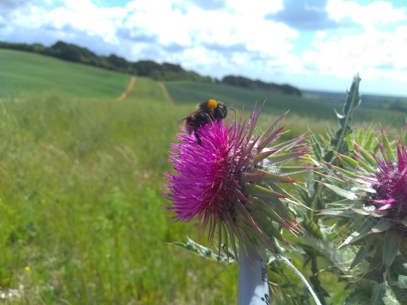 A group of farmers have had their conservation efforts recognised by Defra