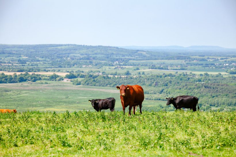 The Aquifer Partnership is funding a number of farms as part of three-year trials