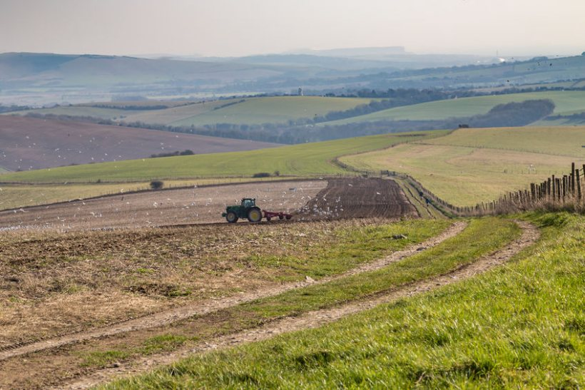Peers want to know how Defra will ensure sufficient support to farmers during the agricultural transition
