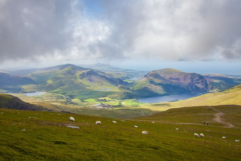 Hilly and rainy locations like Wales are among the most sustainable habitats to produce meat, the study says
