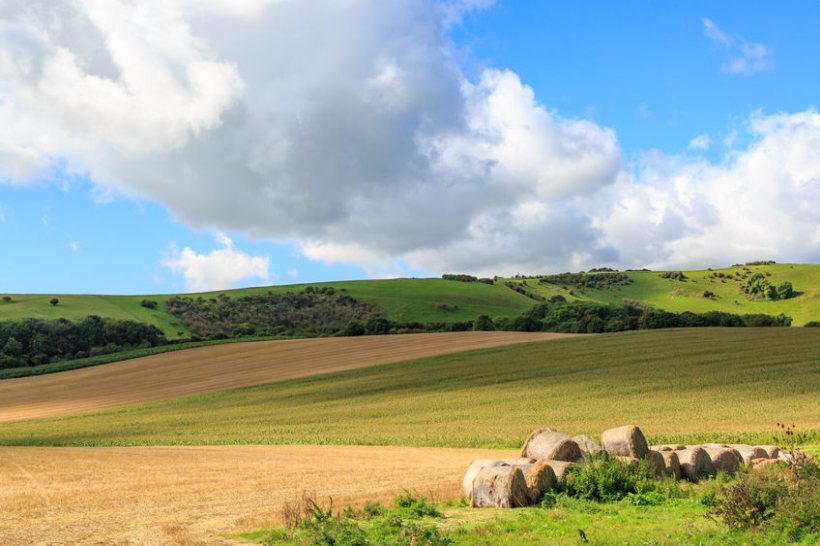 Agri-tech experts suggest a Code of Practice similar to Australia's could be adapted to the UK