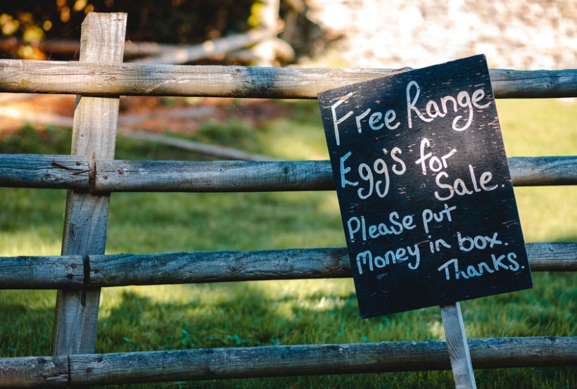 This year has seen a huge increase in the number of people using farm shops